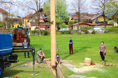 Maibaumaufstellen in Kuchl 2021